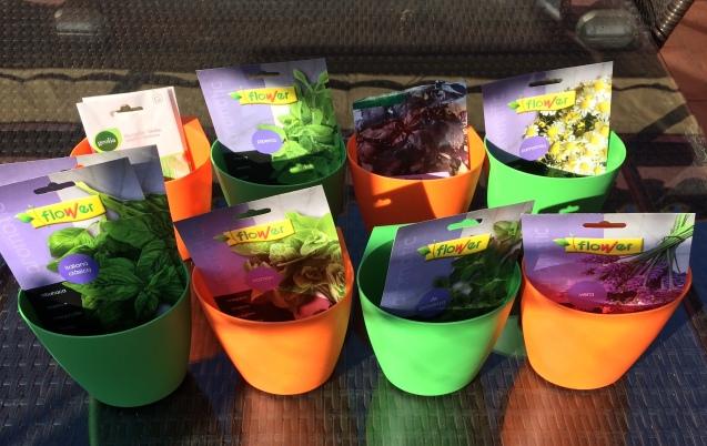 De izquierda a derecha y de arriba a abajo: Cebollino, menta, albahaca púrpura y manzanilla. Albahaca, orégano, tomillo y lavanda.